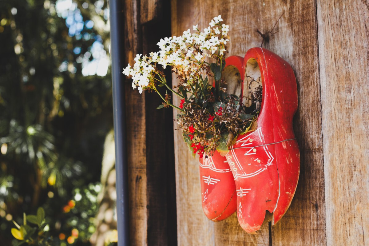 Dutch clogs: the wooden shoes of the Netherlands – DutchReview