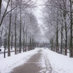 snow-3938160_1920