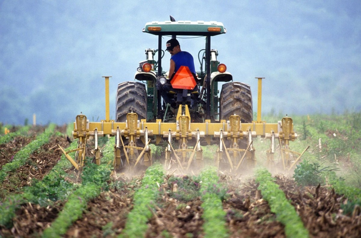 farmers protest nitrogen crisis blame