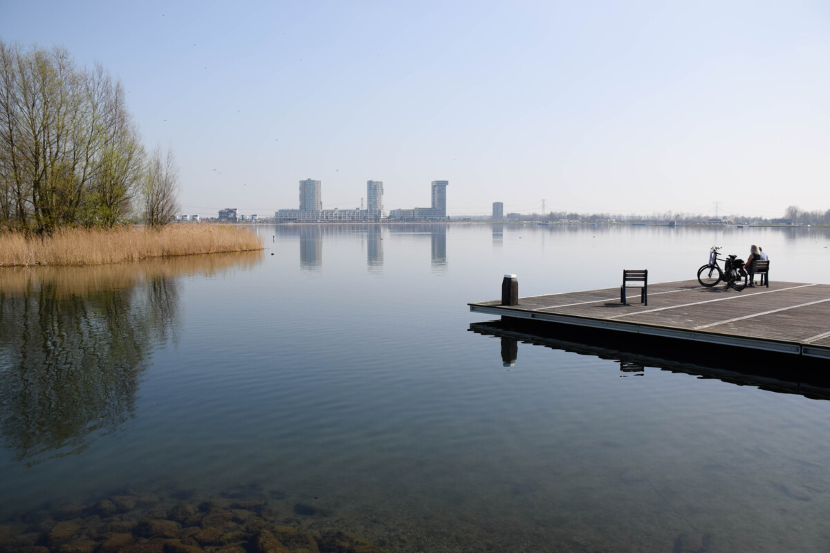 photo-of-views-at-the-kralingse-plas-in-rotterdam