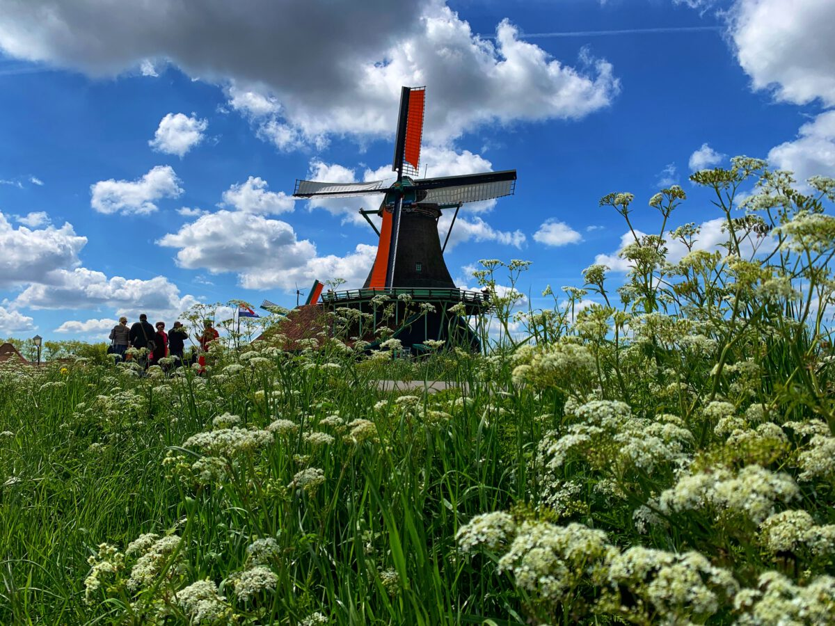 a-picture-of-windmill-beneath-sun-and-clouds