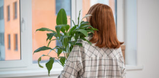 woman-holding-plant-empty-just-moved-in-empty-home