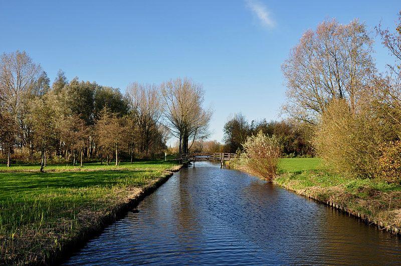 A-lake-on-a-Vlieland-hikinh-route-near-The-Hague