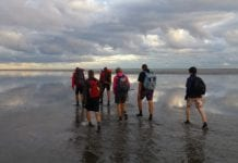 mudflat walking in the Netherlands