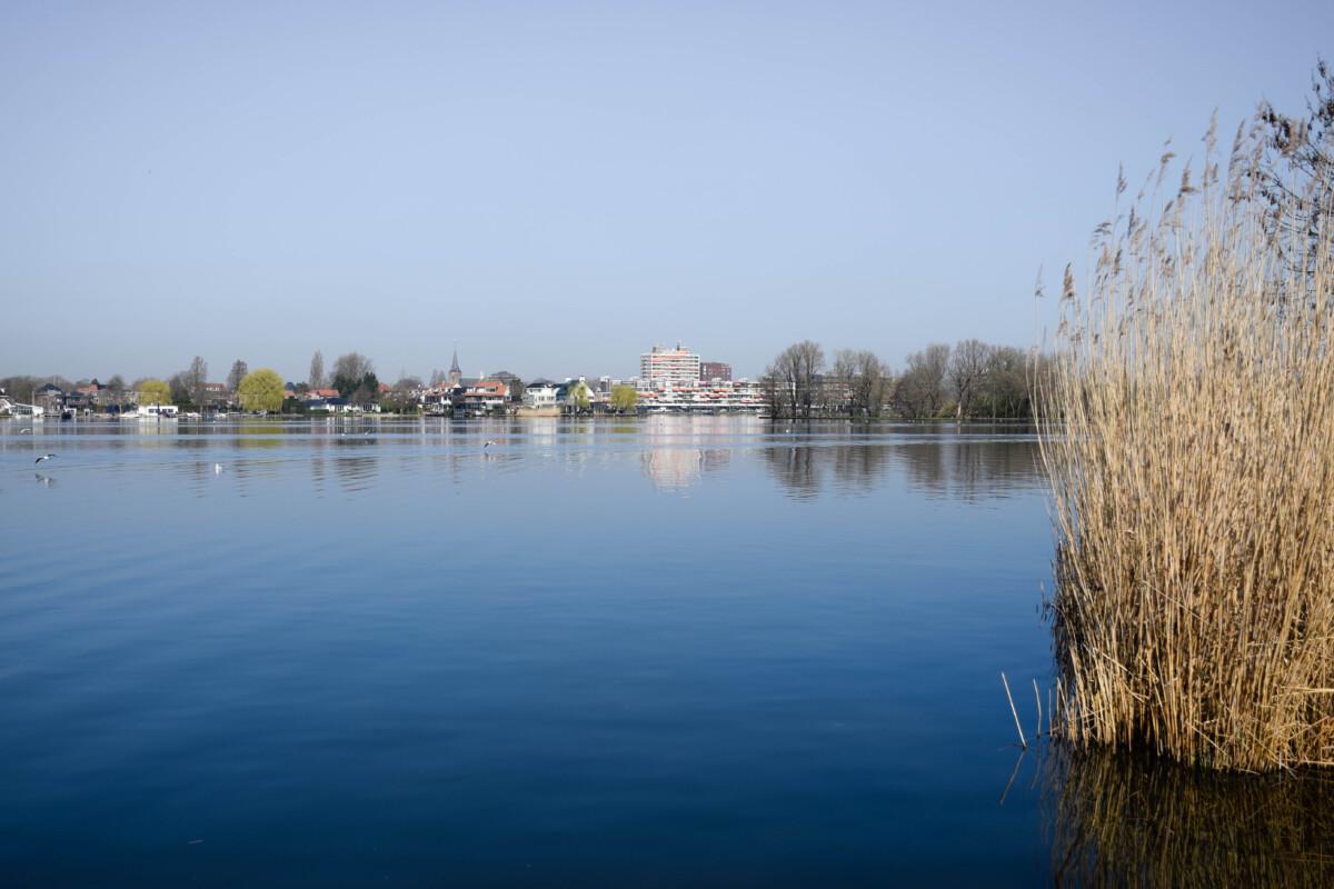 photo-of-the-lake-views-on-a-walk-through-prinsemolen-park